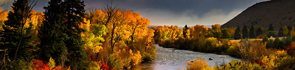 autum_colors_page_header